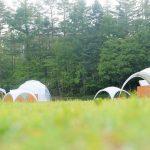 芝の上にあるアメージングドームを見る