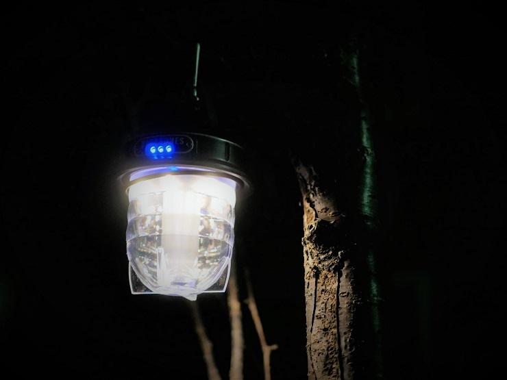 木に吊るしたベアーボーンズリビングビーコンライトLED