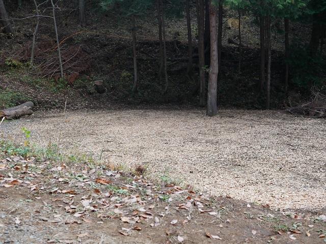 オート森林サイト