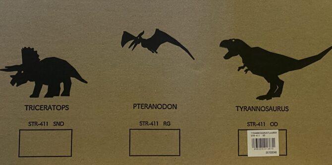 外箱の恐竜